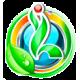 Зеленные и пряные культуры